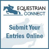Submit your entries online